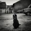Фотоальбом Masik :-)