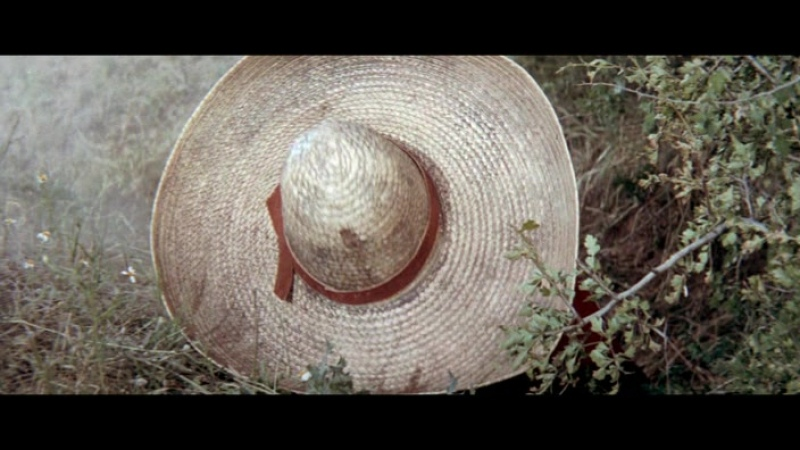 Ружья великолепной семерки 1969г Джордж Кеннеди Джеймс Уитмор Монте Маркэм и др