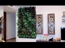 Знакомимся с компанией Lafasad Вертикальное озеленение