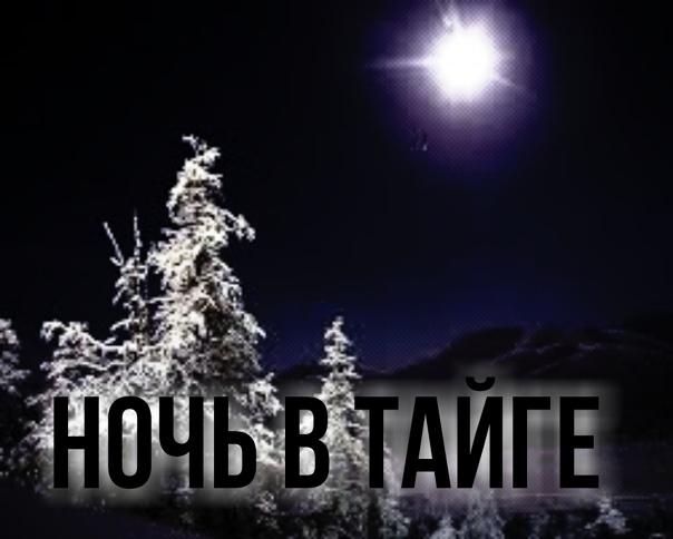 Ночь в тайге, которую вспоминаю с ужасом Автор:Светлана Г.То, о чем расскажу, произошло в 1990 году. Я работала в геологии, в тайге. В отряде нас было шесть человек: начальник отряда, геолог