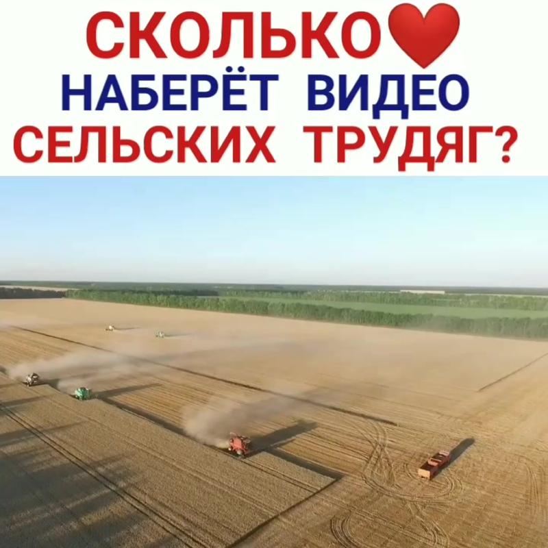 уборка урожая \ сельхозтехника