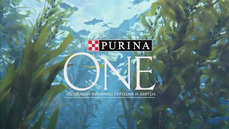Реклама__Purina_One_Природа_здоровья