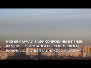 Появилась новая информация о ситуации с коронавирусом в Пензенской области