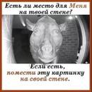 Романова Настя | Санкт-Петербург | 19