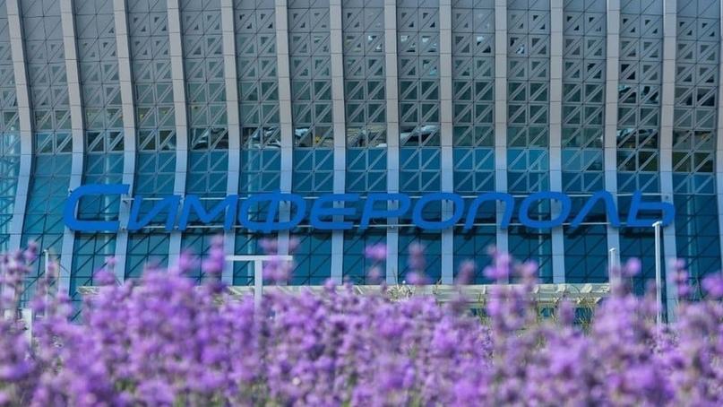 Все на фотосессию: в аэропорту Симферополя расцвела лаванда