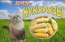 Петоканова Анастасия | Оренбург | 35