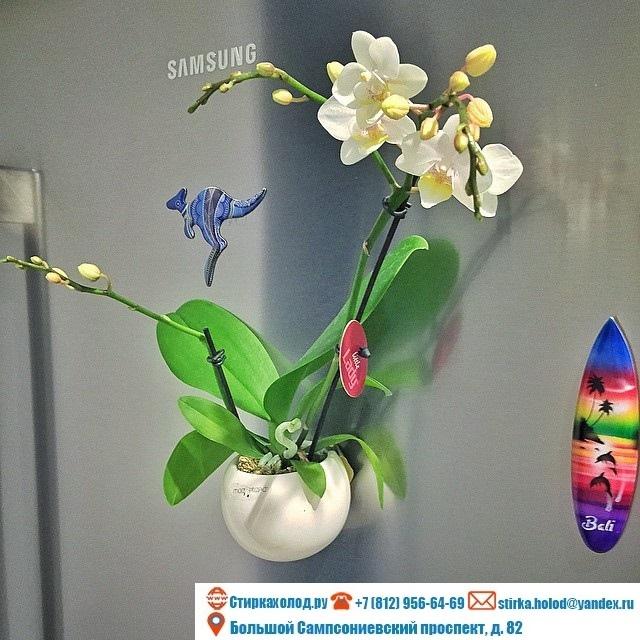 Креативные холодильники, изображение №10
