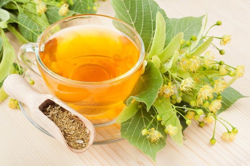 Польза липового чая