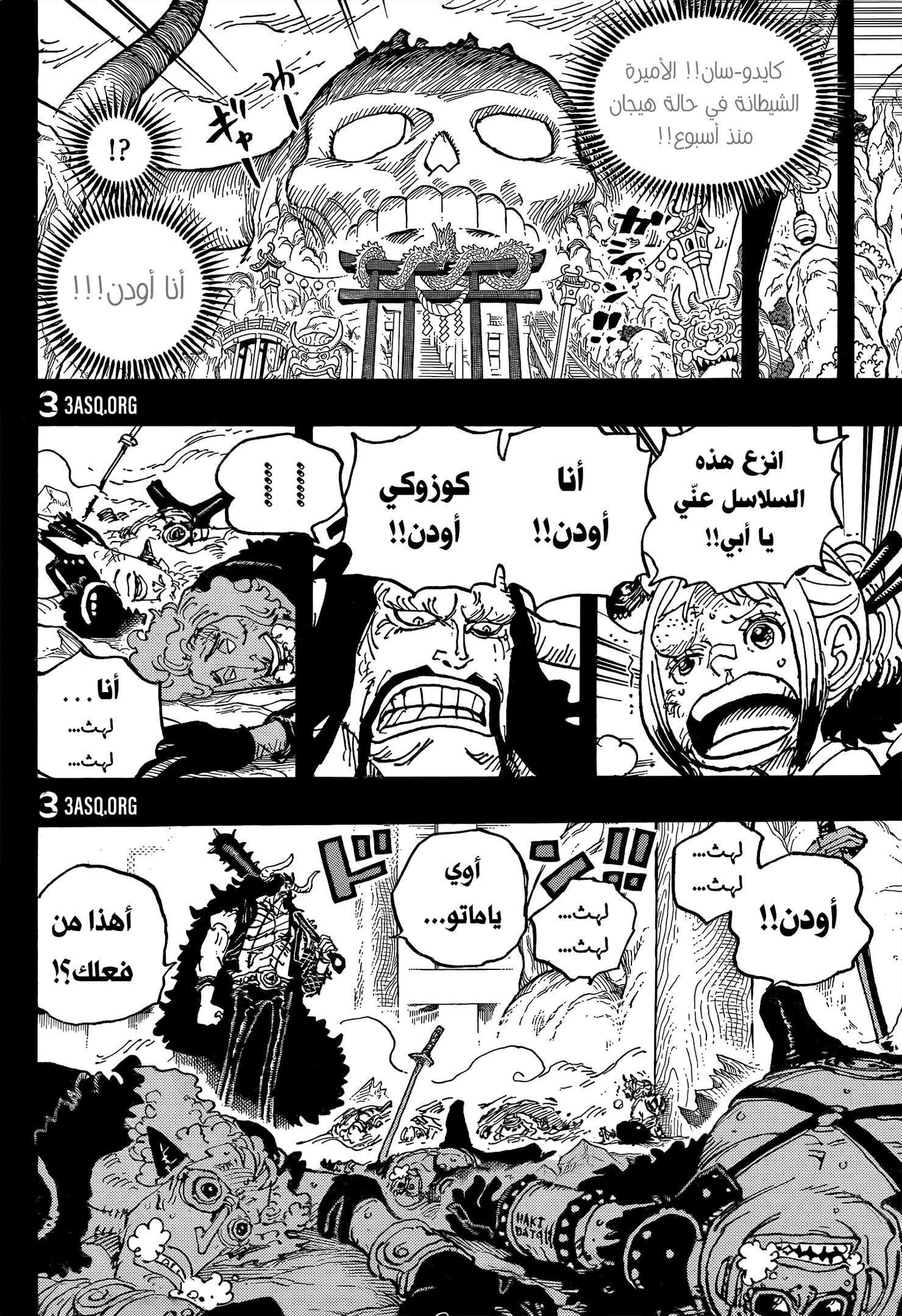 One Piece Arab 1024, image №10