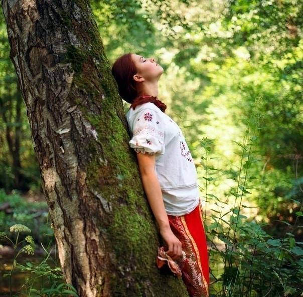 ЛЕСОТЕРАПИЯ…ЛЕСНОЙ ВОЗДУХ… Лесной воздух содержит более 200...