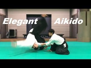 Elegant Aikido & Special Ninja Counter Techniques