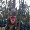 Динопарк в Зеленогорске