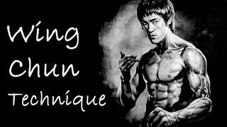 Мастерская техника Вин Чун