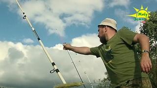 ДОНКИ КРОКОДИЛ и ТЕЛЕСКОП. На Что Будет Клевать? Рыбалка Летом.