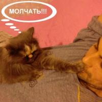 Фотография Сергея Старокожко ВКонтакте