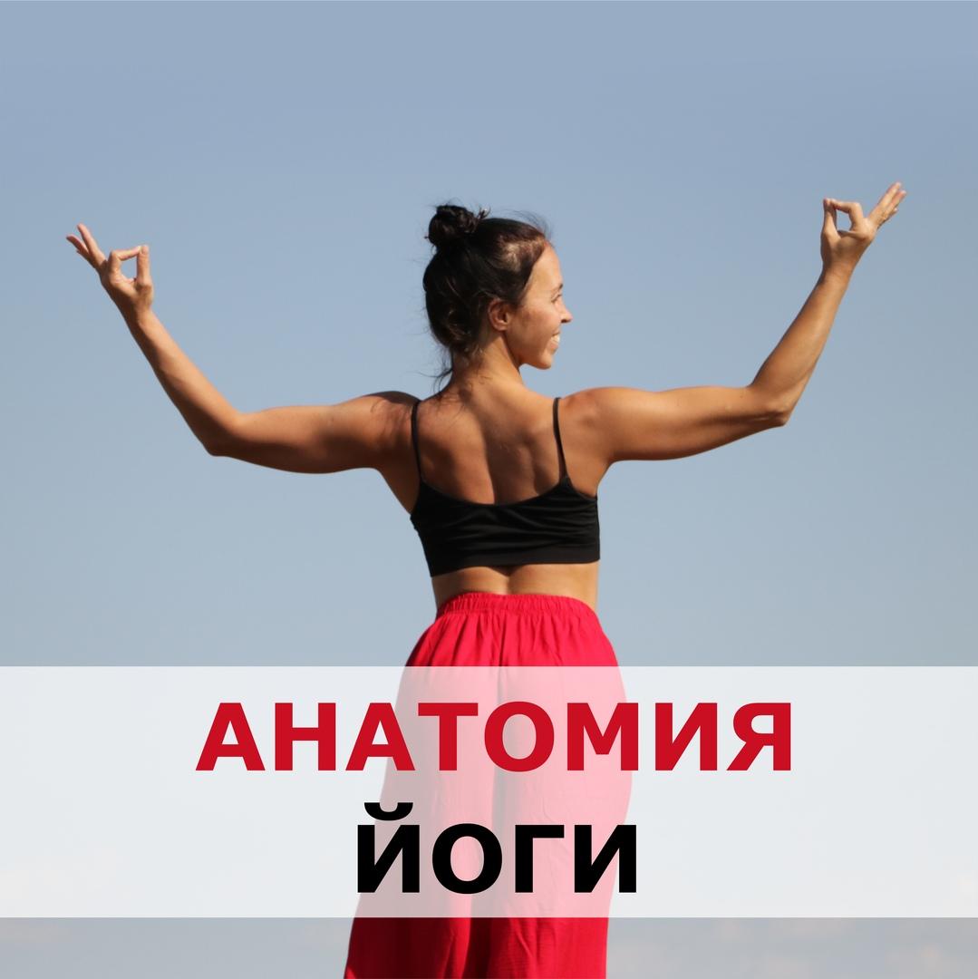 Афиша Екатеринбург 23.08 / АНАТОМИЯ ЙОГИ