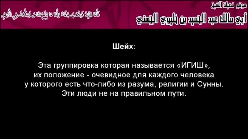 ИГИШ крайние люди экстремисты небрежные в отношении крови мусульман Ответ шейха Джухани