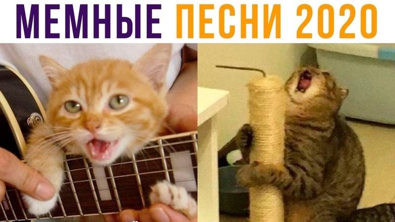 МЕМНЫЕ ПЕСНИ 2020 Мемозг 468