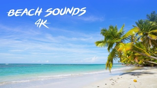 Quiet Beach Sounds from the Tropics - Ocean Wave Sounds for (Meditation, Sleeping, Study, Yoga)