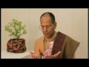 Krishna puja asana sthapana